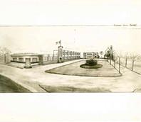 immagine n. 7