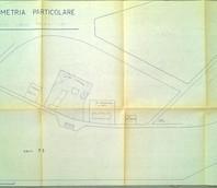 Immagine n. 8