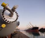 Il porto di Venezia può contare su una rete di terminalisti, trasportatori, agen