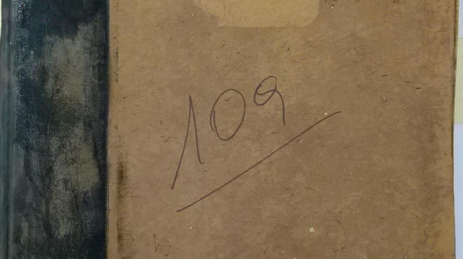 Foto n. 10