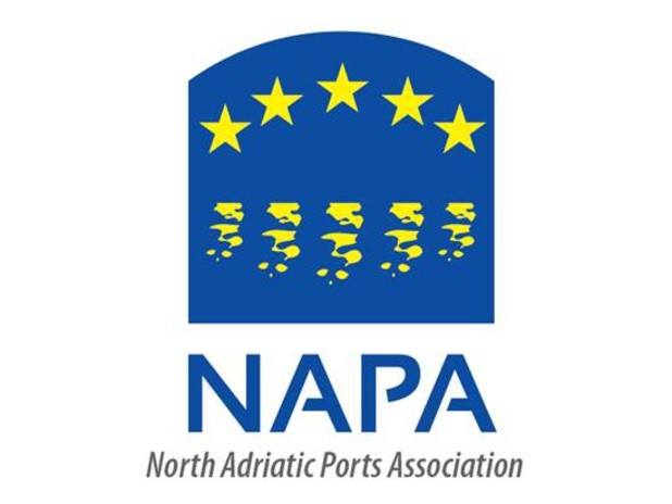 Logo del NAPA