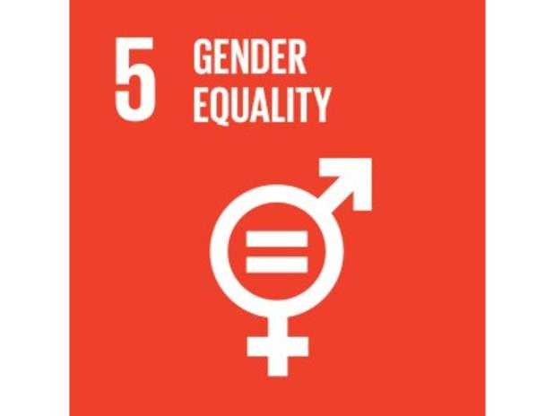 Obiettivo numero 5 delle Nazioni Unite