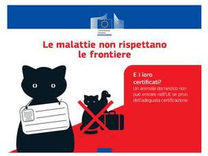 Manifesto che illustra le condizioni richieste per introdurre animali e prodott