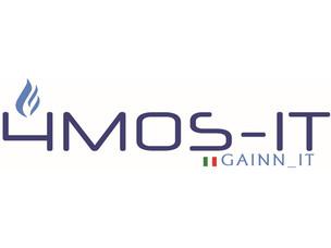 Logo gainn4mos